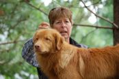 Nova Scotia Duck Tollers